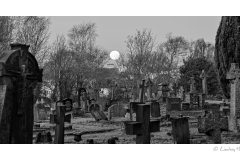 Supermoon over graveyard, Poole, Dorset