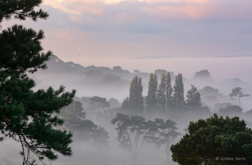 Early morning mist over Dorset