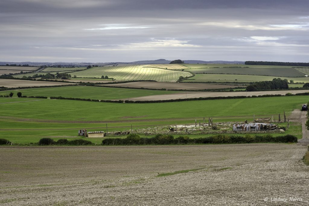 GDSF 2016 after the crowds have gone. Looking down from the hill overlooking the site at the empty fields. Click on photo to view larger version.