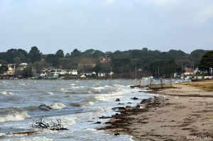 Two jetties washed ashore from somewhere in Poole Harbour
