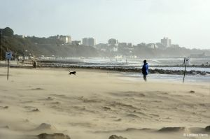 Branksome Beach, early morning 15th February 2014
