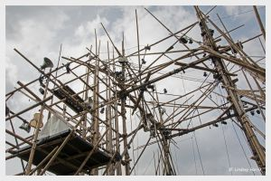 Bamboo structure for cirkVOST's 'BoO' trapeze show