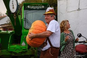 Weighing home-grown pumpkins