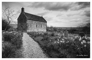 The Little Daffodil Church