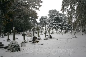 Snow at Parkstone Cemetery, Poole, Dorset