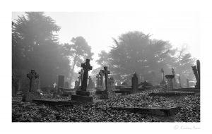 Graveyard in the mist