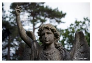 Stone angel at Parkstone Cemetery