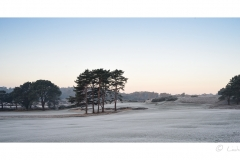 Parkstone Golf Course and frost.