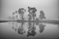 Dense fog over the lake at Parkstone Golf Club.