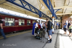 The Town Crier greets passengers from the first train from Swanage to Wareham in 45 years. At Wareham Station.