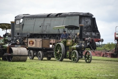 Steam train being pulled around the heavy Haulage Arena at Great Dorset Steam Fair 2017.