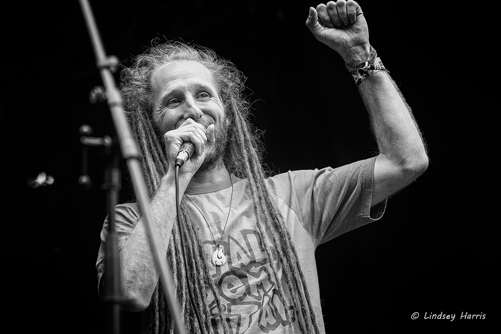 Dubheart at Grooves on the Green, Lower Parkstone, Poole, 2016. Local reggae band (from Bournemouth).
