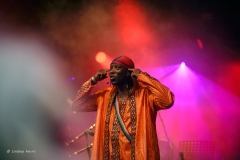 Afro Celt Sound System at Larmer Tree Festival, 2016.