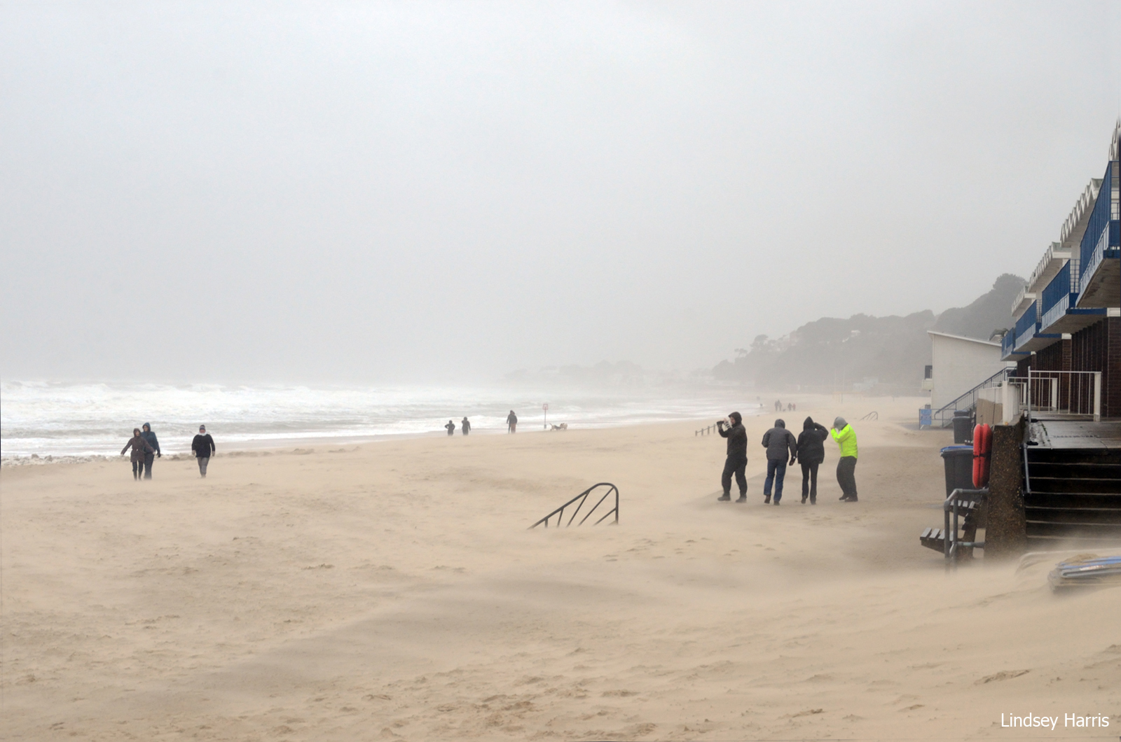 Branksome Beach – New Year's Day Storm, 2014