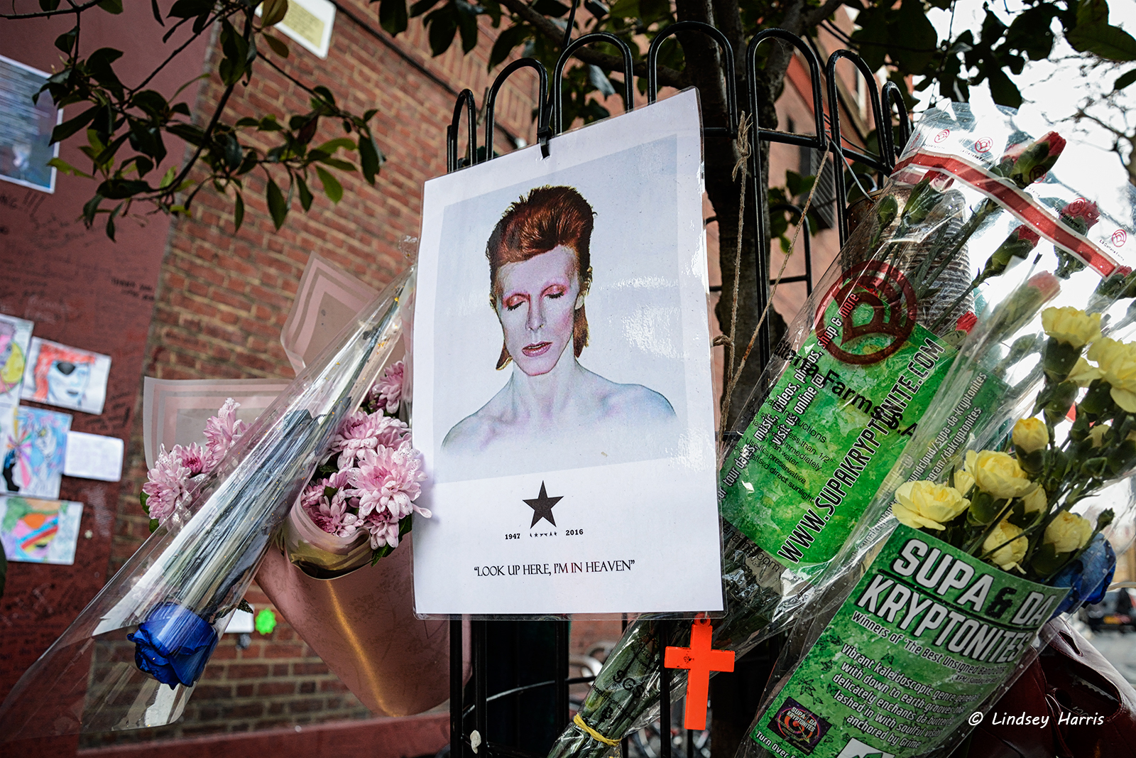David Bowie Brixton Memorial Photos