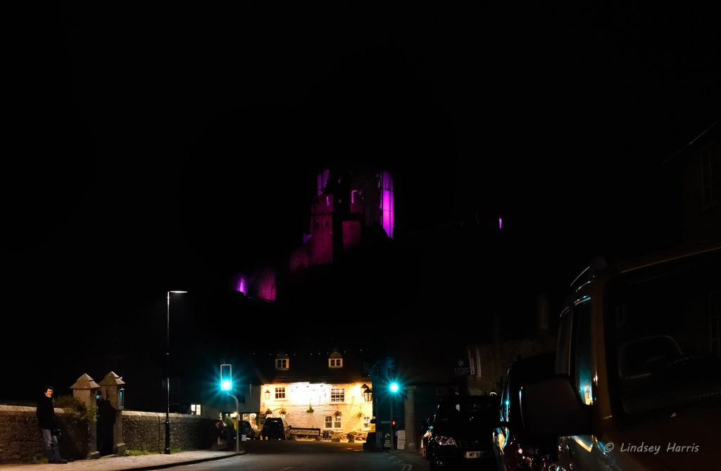 corfe castle purple