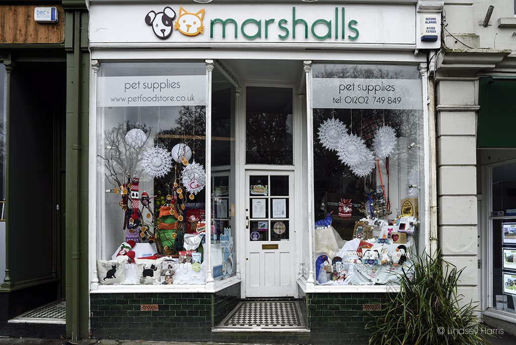 Marshall's Pet Store, Lower Parkstone.