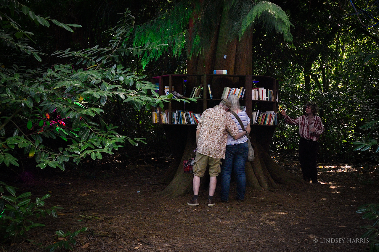 Looking at books in the woods - End of the Road 2021.