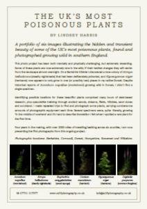 Interpretation panel - The UK's Most Poisonous Plants