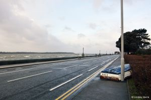 Storm debris from Poole Harbour