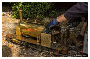 Maid Marion miniature train