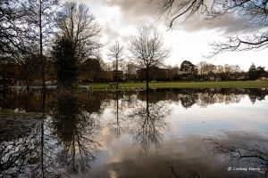 Flooding by the cricket pitch at Poole Park, Poole. Dorset