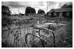 Old swimming pool at derelict school.