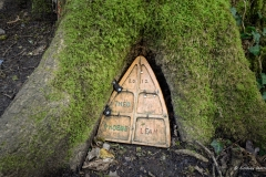 Fairy Doors, Wayford Woods