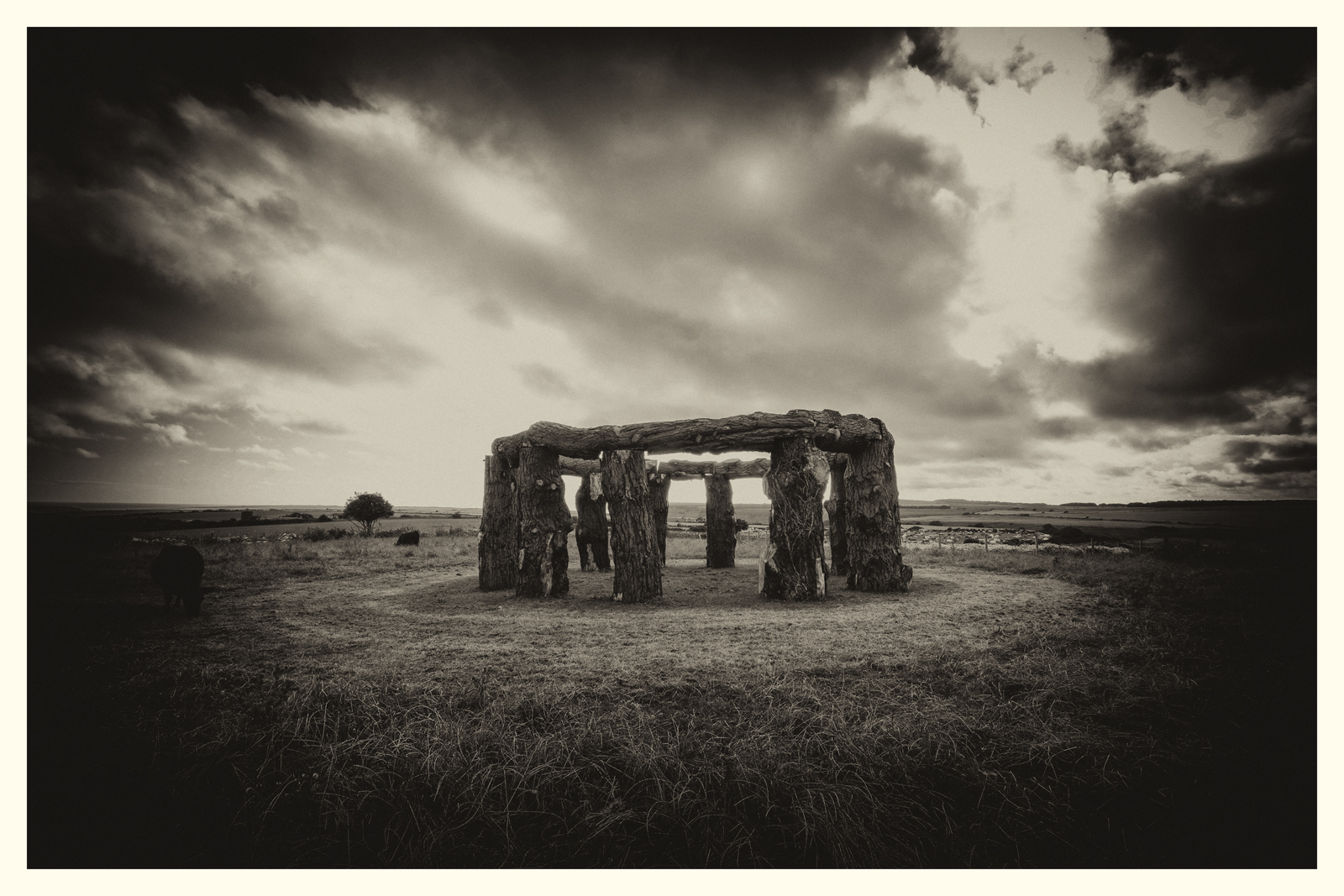 'Woodhenge', Worth Matravers, Dorset. 2016.