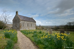 Little Daffodil Church, Dorset.