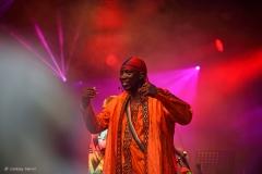 Afro Celt Sound System. Larmer Tree Festival 2016.