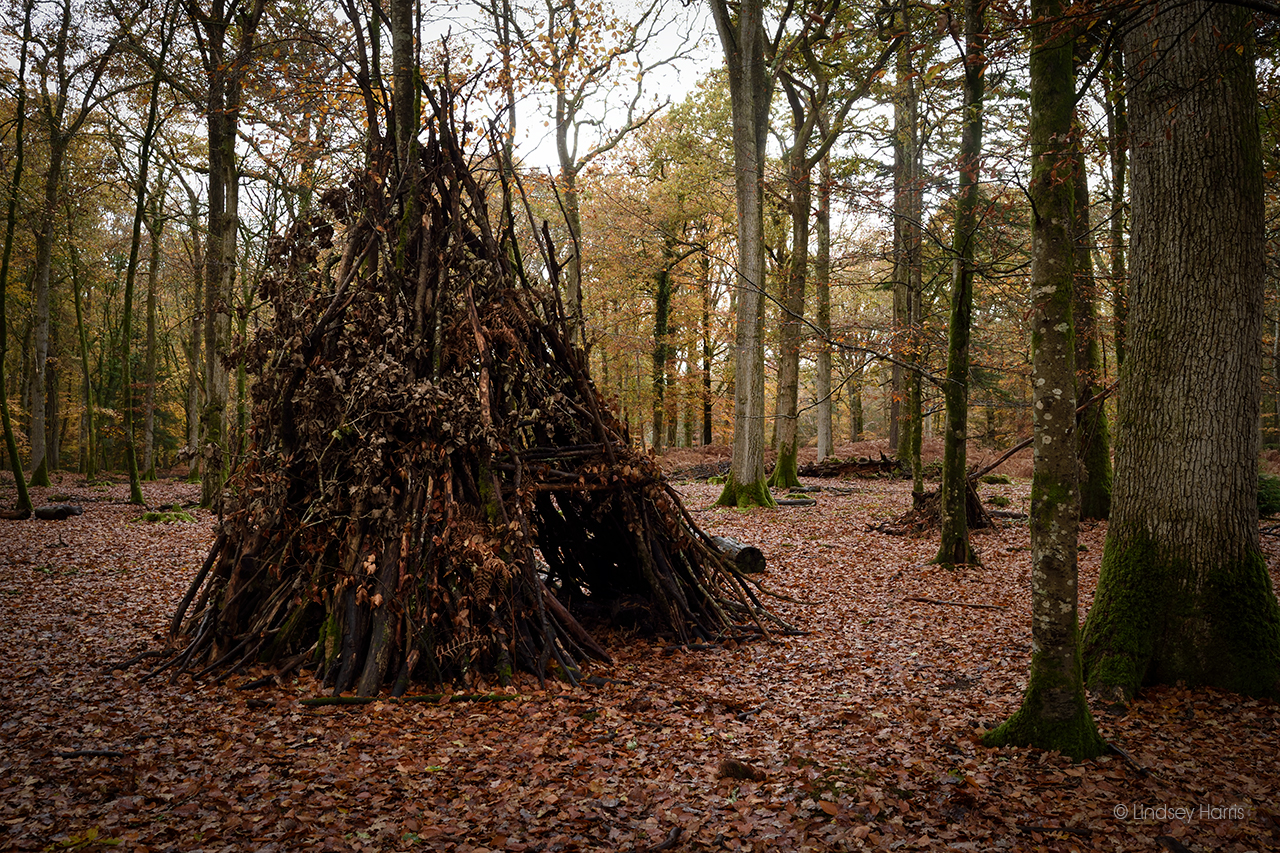 A den made from sticks and leaves at Blackwater Arboretum, New Forest.