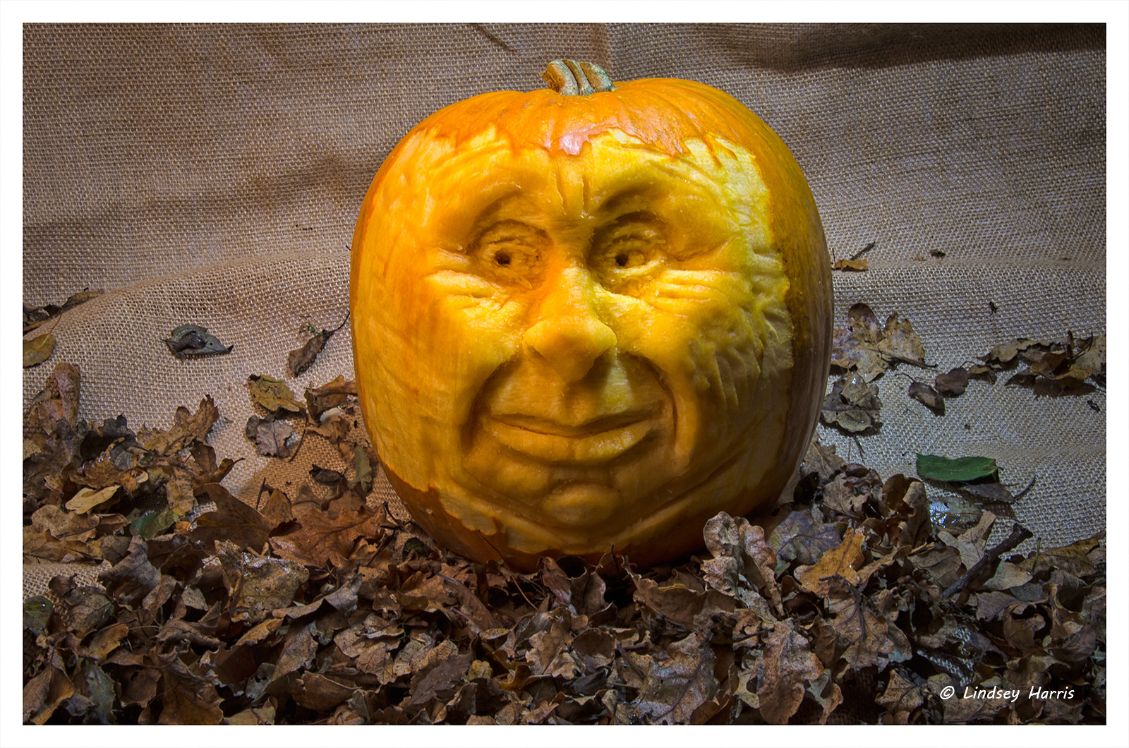 Pumpkin carving 2014.