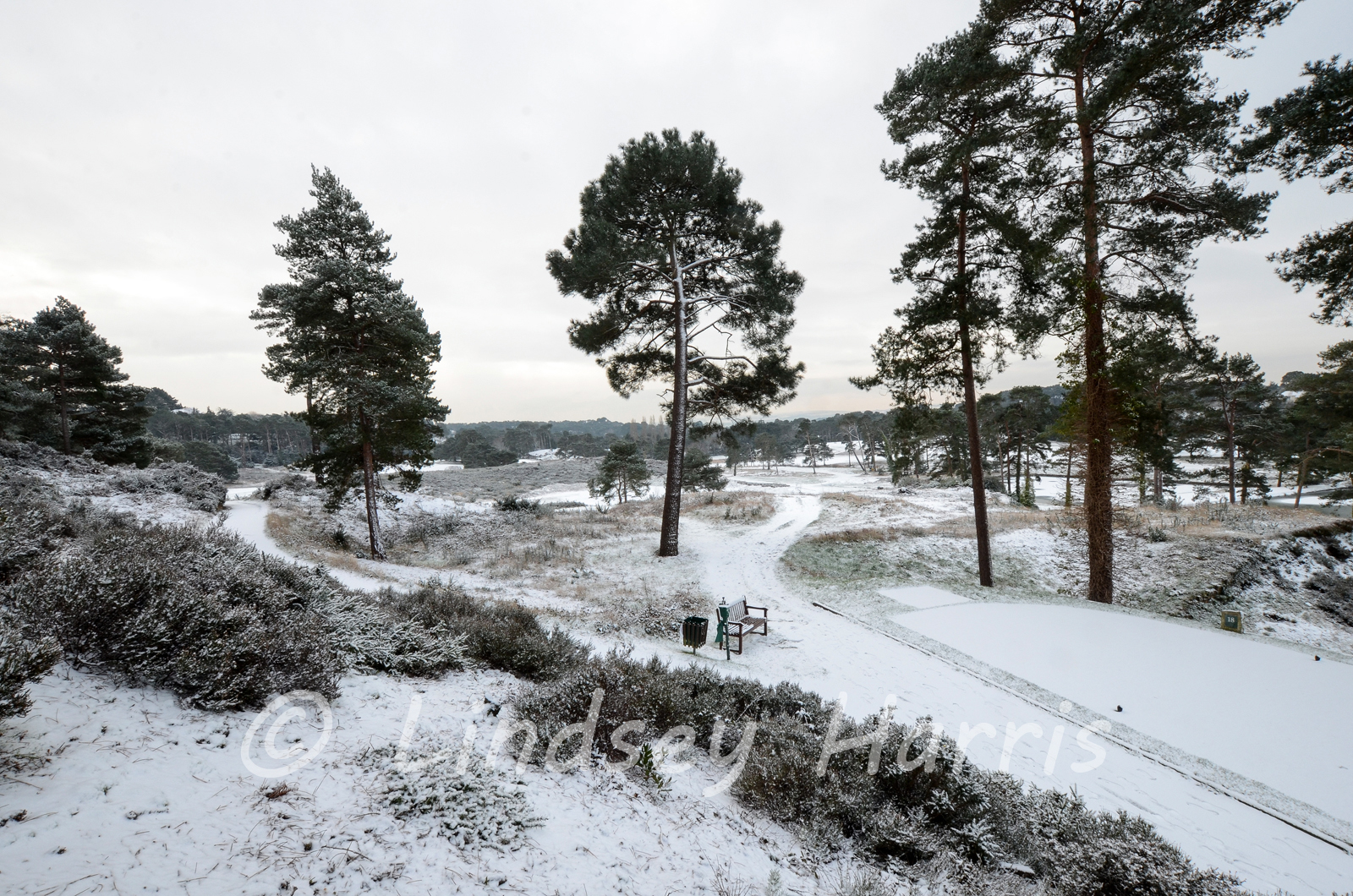 Snow at  Parkstone Golf course, Poole, Dorset. February 3rd 2015.