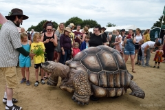 Zelva, a giant mechanical tortoise at Wickham Festival 2019.